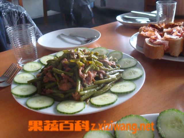 果蔬百科扁豆炒肉